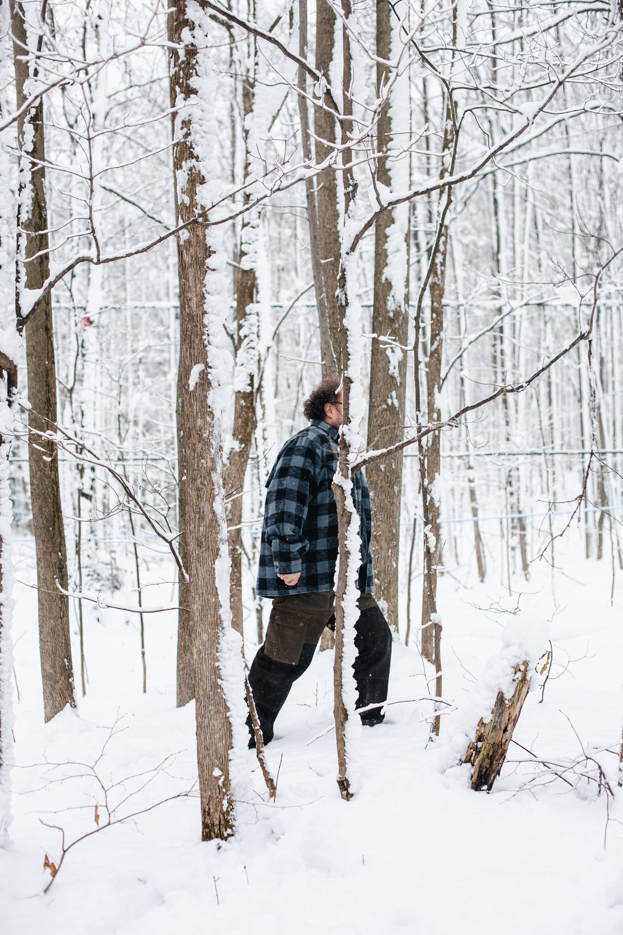 chef Martin Picard walking between trees covered in snow by Alexi Hobbs for Itineraire d'une cuisine contemporaine