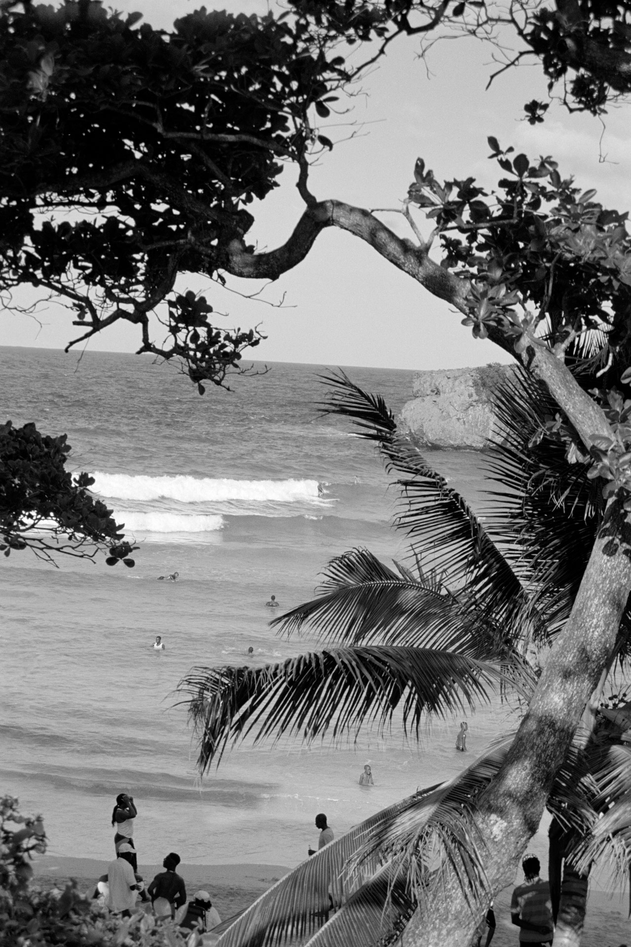 view of the sea from behind trees by Oumayma B Tanfous in Jamaica