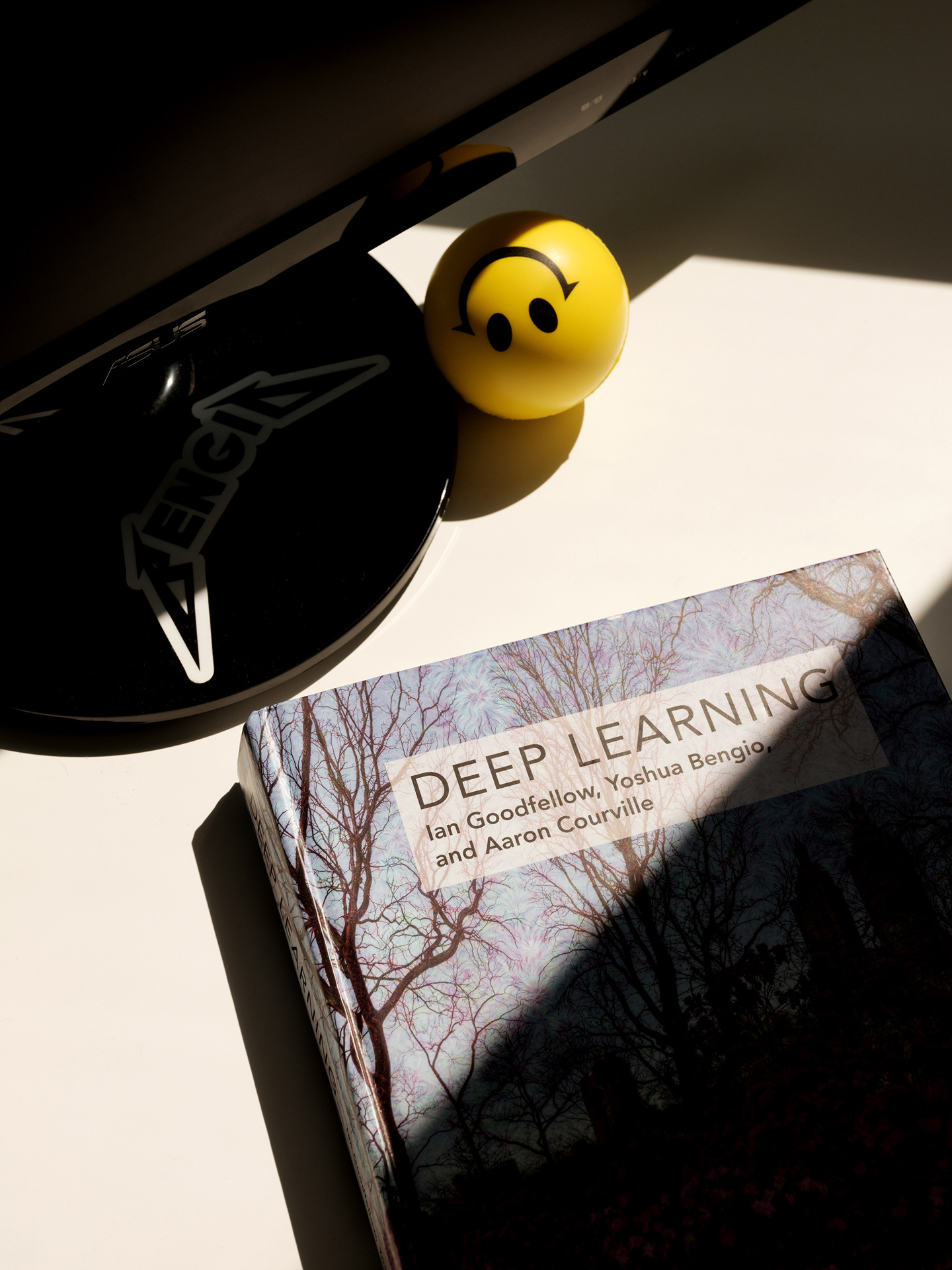 "book called ""deep learning"" with stress ball in the sun by Guillaume Simoneau for Element AI with Fortune Magazine"